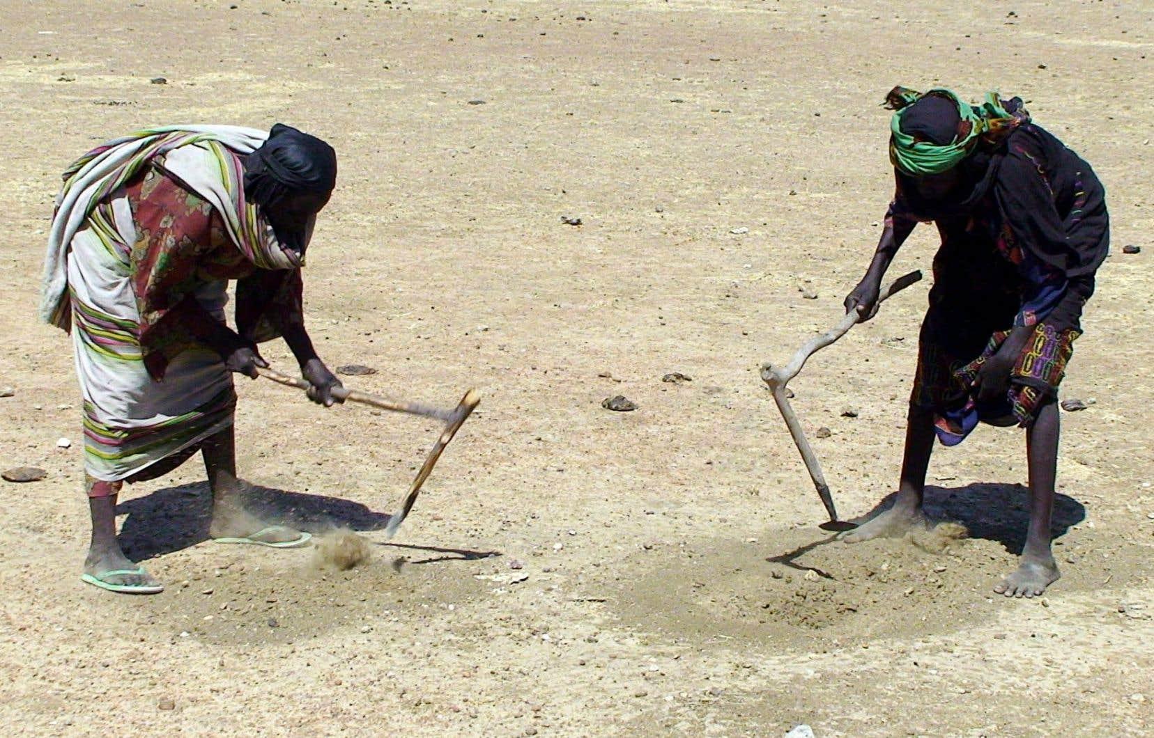 Le Sénégal est touché par les sécheresses au Sahel depuis de nombreuses années. L'aide humanitaire ne peut donc pas y rester que pour quelques mois.