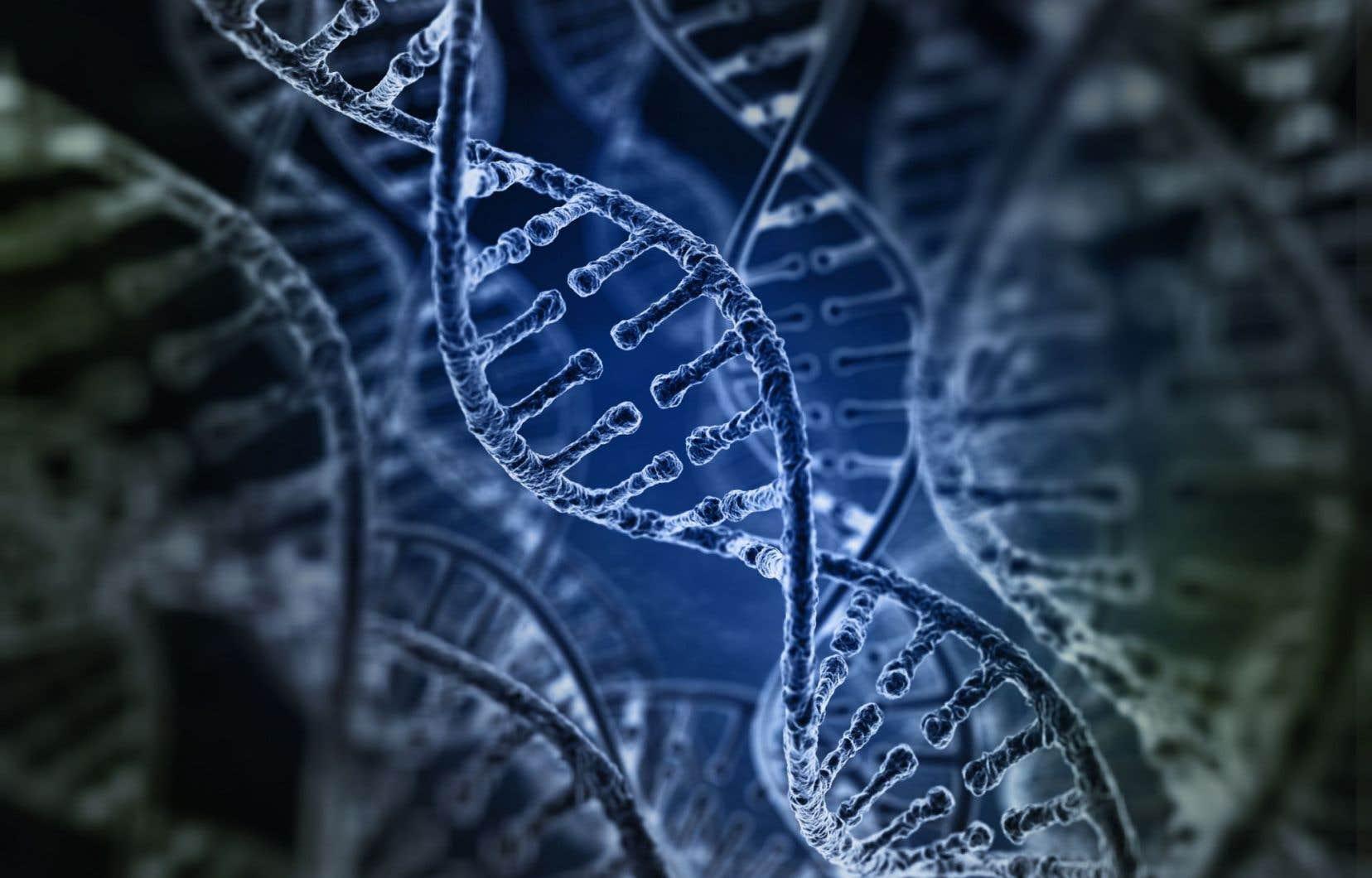 Une personne porteuse de deux copies de l'ApoE4 est estimée être 8 à 12 fois plus à risque d'Alzheimer.