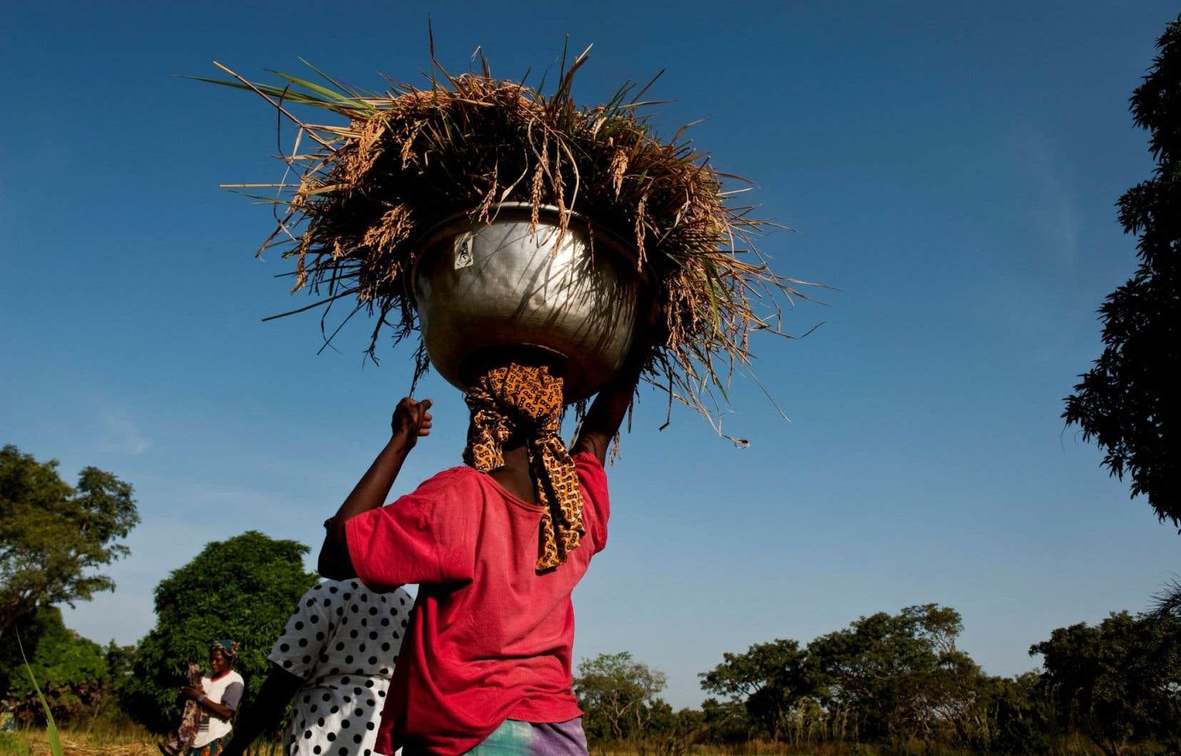 «Nous devons prendre en considération les femmes et les filles au début de tous les processus», écrit Marie-Claude Bibeau.
