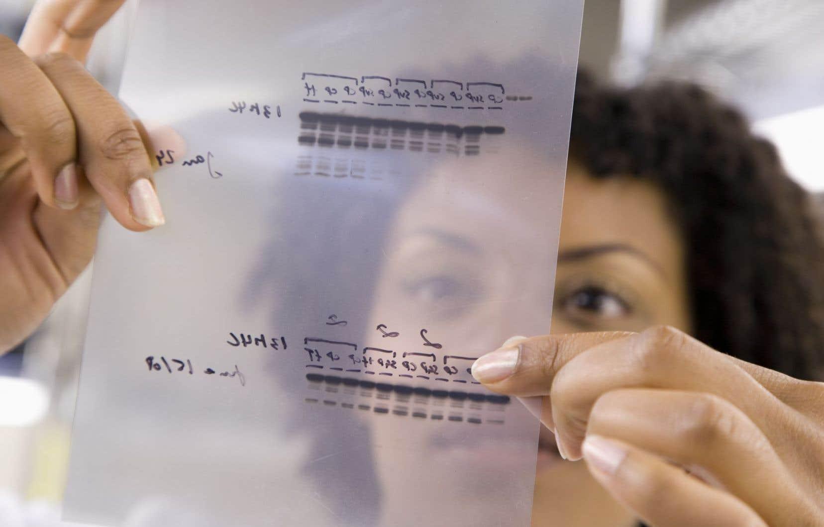 Les plus récentes données colligées par Vincent Larivière indiquent que la parité hommes-femmes reste à faire dans les plus hautes sphères universitaires.