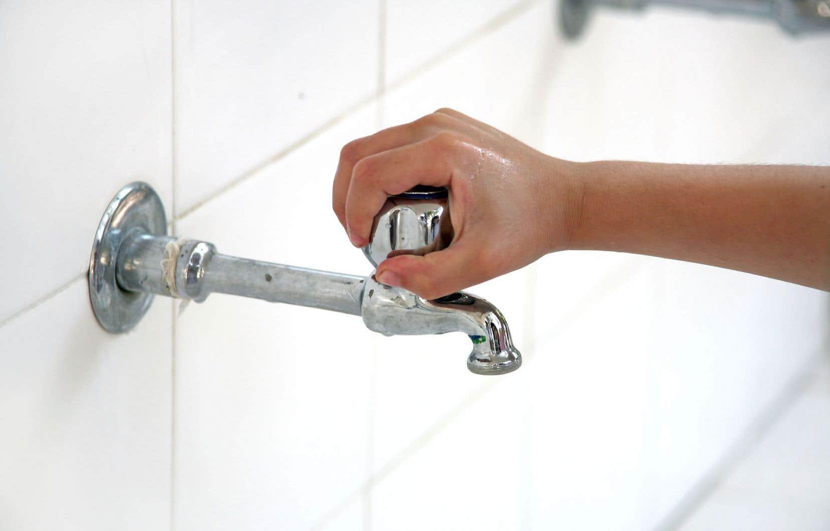 Une douche dure en moyenne 7 minutes et requiert 65 litres d'eau potable, laquelle repart dans la nature couverte de mousse artificielle.