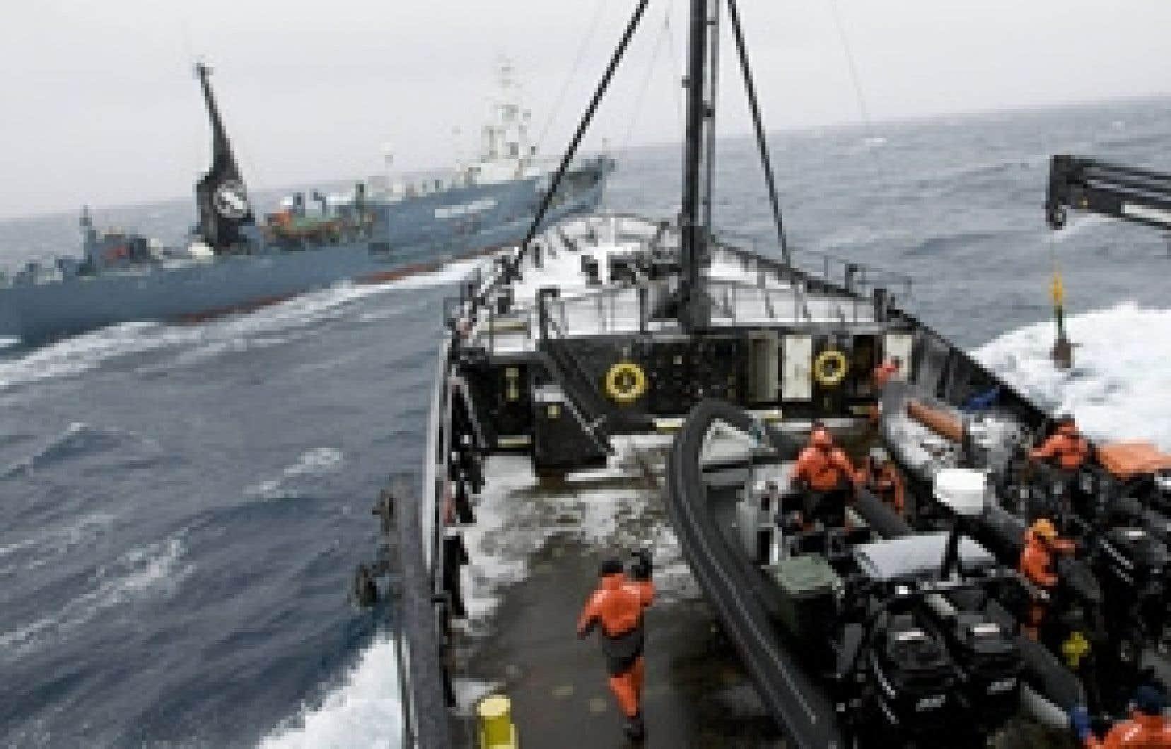 Le groupe animaliste Sea Shepherd a tenté de s'attaquer au navire japonais Yushin Maru 2, en arrière-plan, vendredi. Le Japon justifie la mise à mort de petits rorquals et de rorquals communs en prétextant que cela est essentiel pour mieux connaît