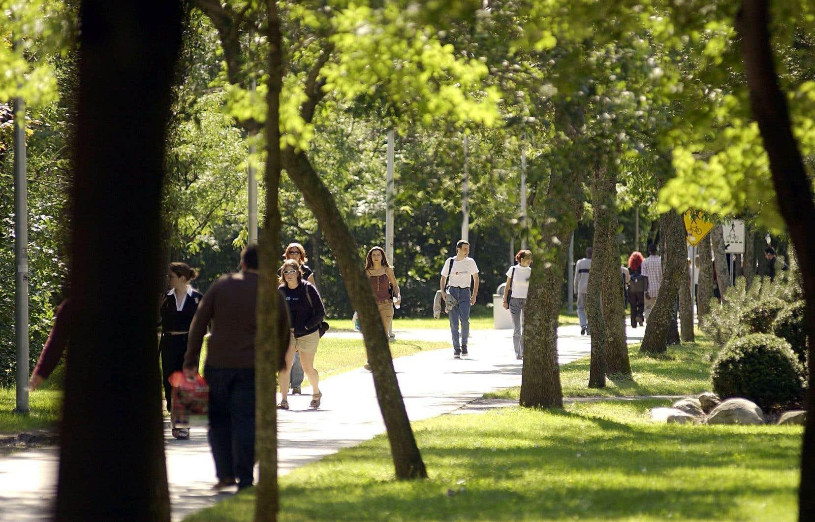 Outre l'obtention de l'Étoile d'or pour ses initiatives en développement durable, l'Université Laval s'engage dans une démarche d'investissement responsable qui devrait l'amener à déplacer les investissements de ses fonds de dotation dans les énergies fossiles vers d'autres types de placements.