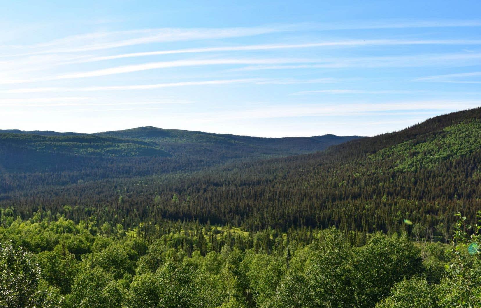 La création d'aires protégées sur le territoire des Chics-Chocs, en Gaspésie, est bloquée en raison de l'omniprésence de permis pétroliers.
