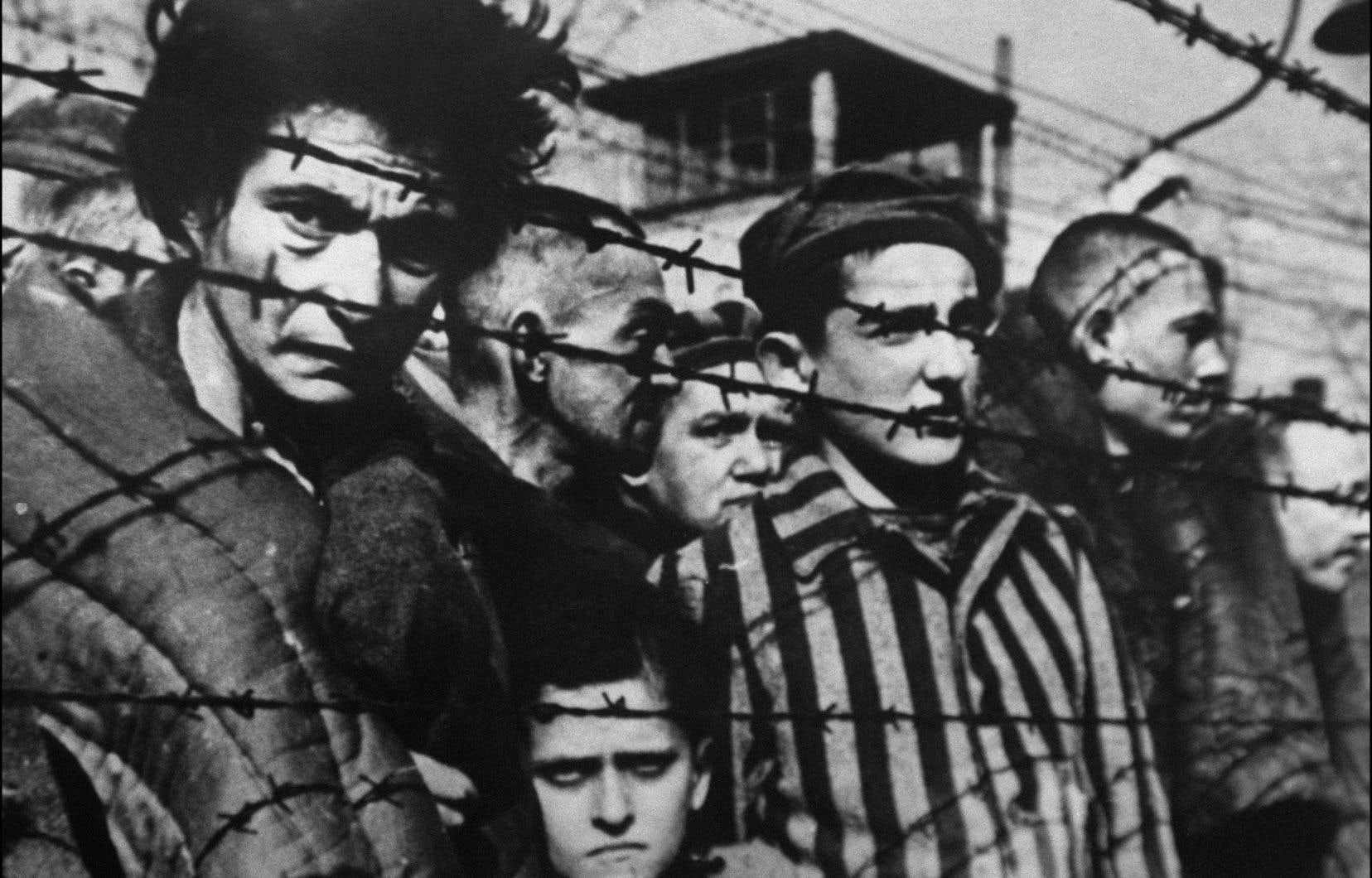 Levi a affirmé dans une entrevue accordée en 1984 qu'à Auschwitz, la volonté de raconter, d'écrire, lui avait permis de tenir bon.