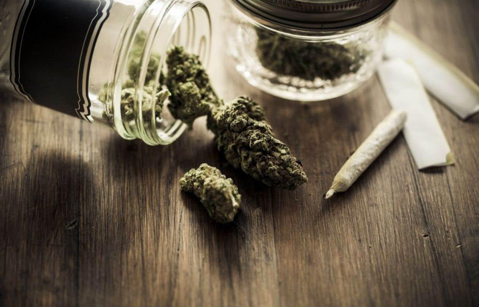 Le gouvernement Trudeau veut s'assurer que le cannabis ne soit pas redirigé vers le marché noir.