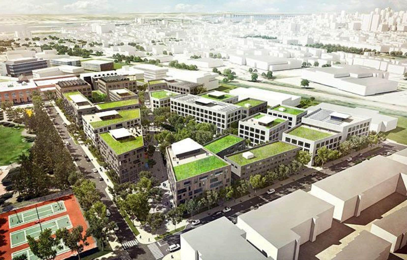 La deuxième phase du Technopôle Angus, située près de la rue Molson et de l'avenue du Mont-Royal, est inspirée des quartiers les plus écologiques dans le monde.