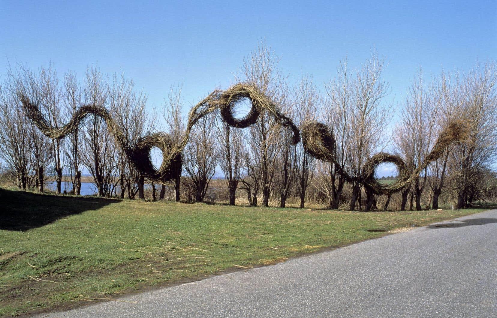 L'artiste Patrick Dougherty créera en direct ses œuvres à partir de tiges de saules tressées dans l'Arboretum du Jardin botanique. Les visiteurs seront aussi invités à créer à ses côtés une œuvre.
