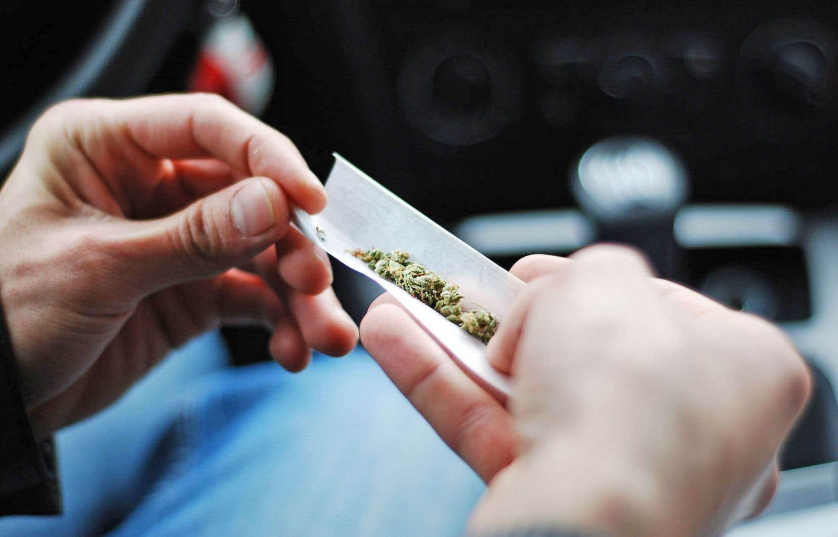 La ministre de la Santé publique fédérale, Jane Philpott, a fait valoir que l'actuelle prohibition est plus coûteuse que la future légalisation.