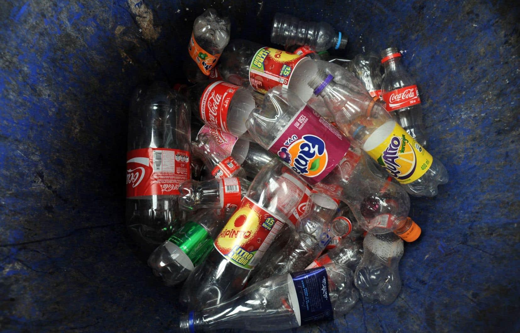 Un milliard de bouteilles de plastiques sont consommées chaque année dans la province. Une bonne partie est jetée à la poubelle.