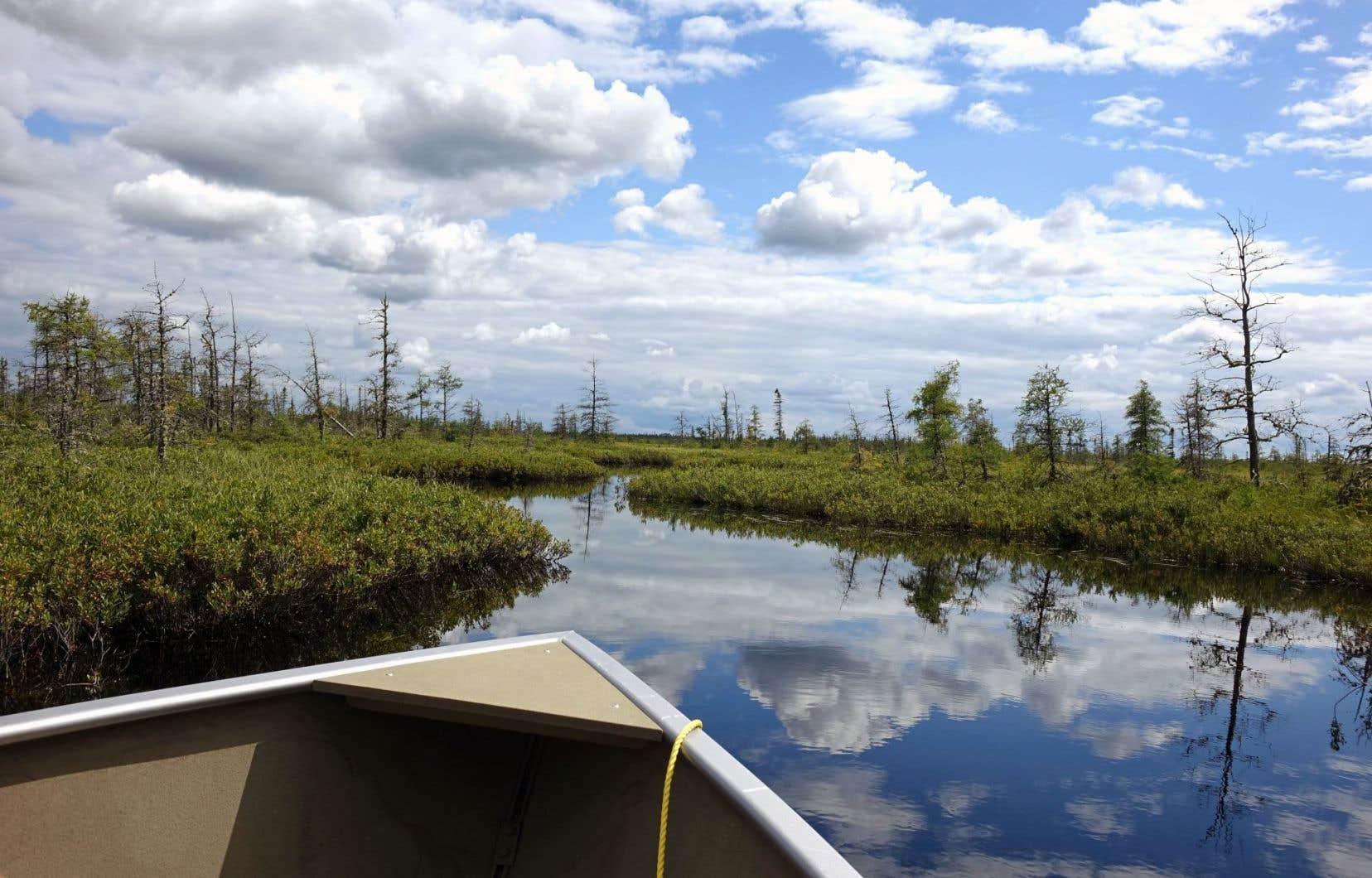 «Monter au lac», en famille ou avec des amis, pour un moment de détente, loin du quotidien trépidant