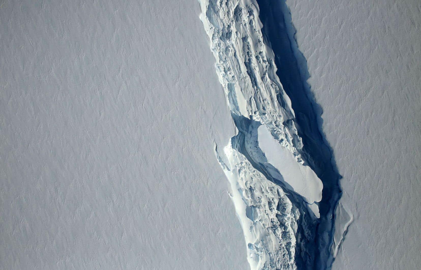 Larsen C était fissurée depuis des années par une gigantesque crevasse. Début juillet, le futur iceberg n'était plus relié au continent antarctique que sur 5km.
