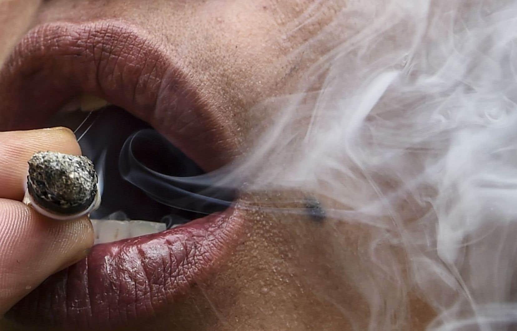 Les chercheurs ont ainsi observé que les personnes qui avaient consommé uniquement de la marijuana — pendant en moyenne 11,5 années — couraient un risque 3,42 fois plus élevé de mourir d'hypertension que celles n'ayant jamais fumé de cannabis.