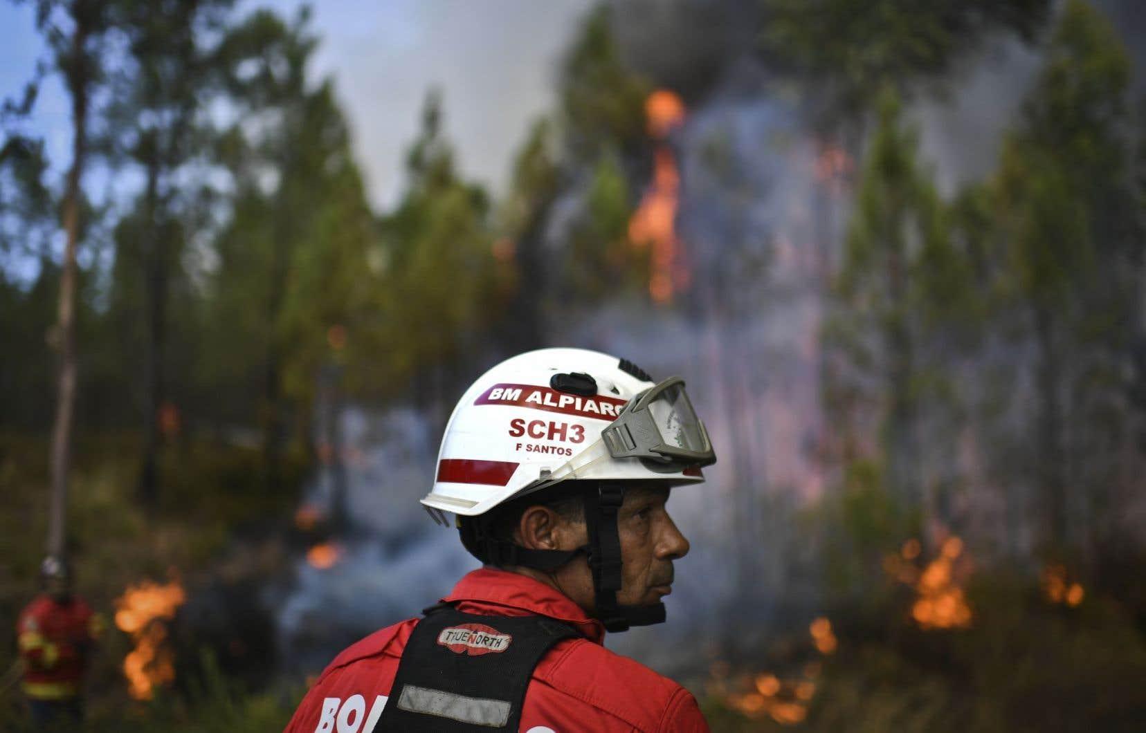 Dans l'ensemble du Portugal, les feux de forêt et de broussailles ont ravagé 141 000 hectares depuis le début de l'année.