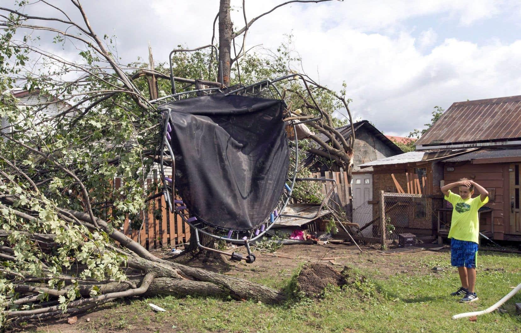 Émile Turcotte regarde avec dépit son trampoline accroché à un arbre après le passage d'une tornade à Lachute, mardi.