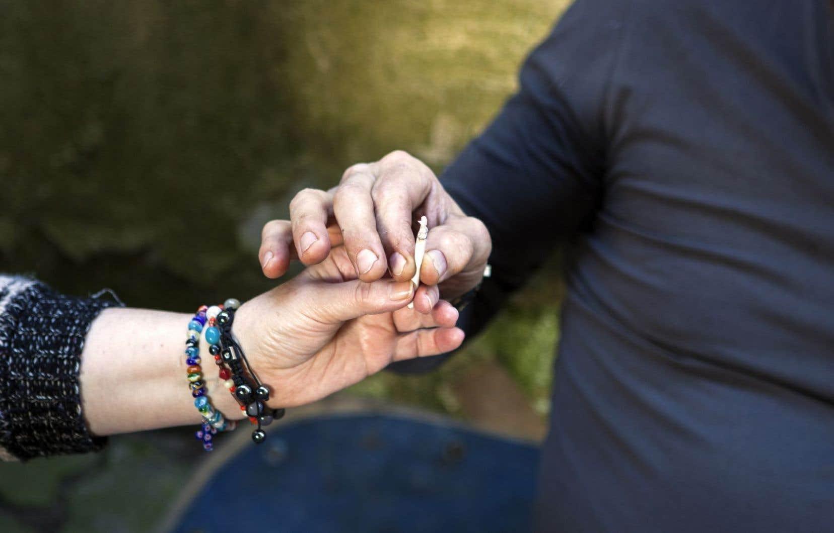 <p>Le gouvernement fédéral détermine le statut légal de la drogue, mais c'est aux provinces de gérer toute la logistique de l'arrivée du cannabis sur le marché licite.</p>