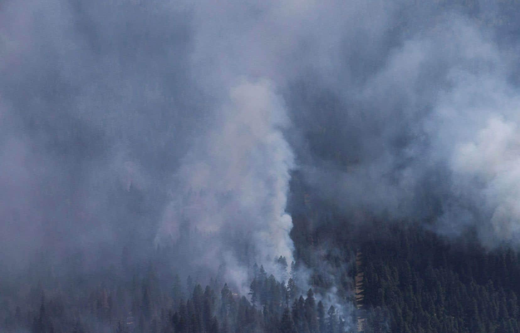 En juillet dernier, des feux de forêt avaient forcé l'évacuation de plus de 1000 personnes habitant dans cette zone à l'est de la ville de Kelowna.