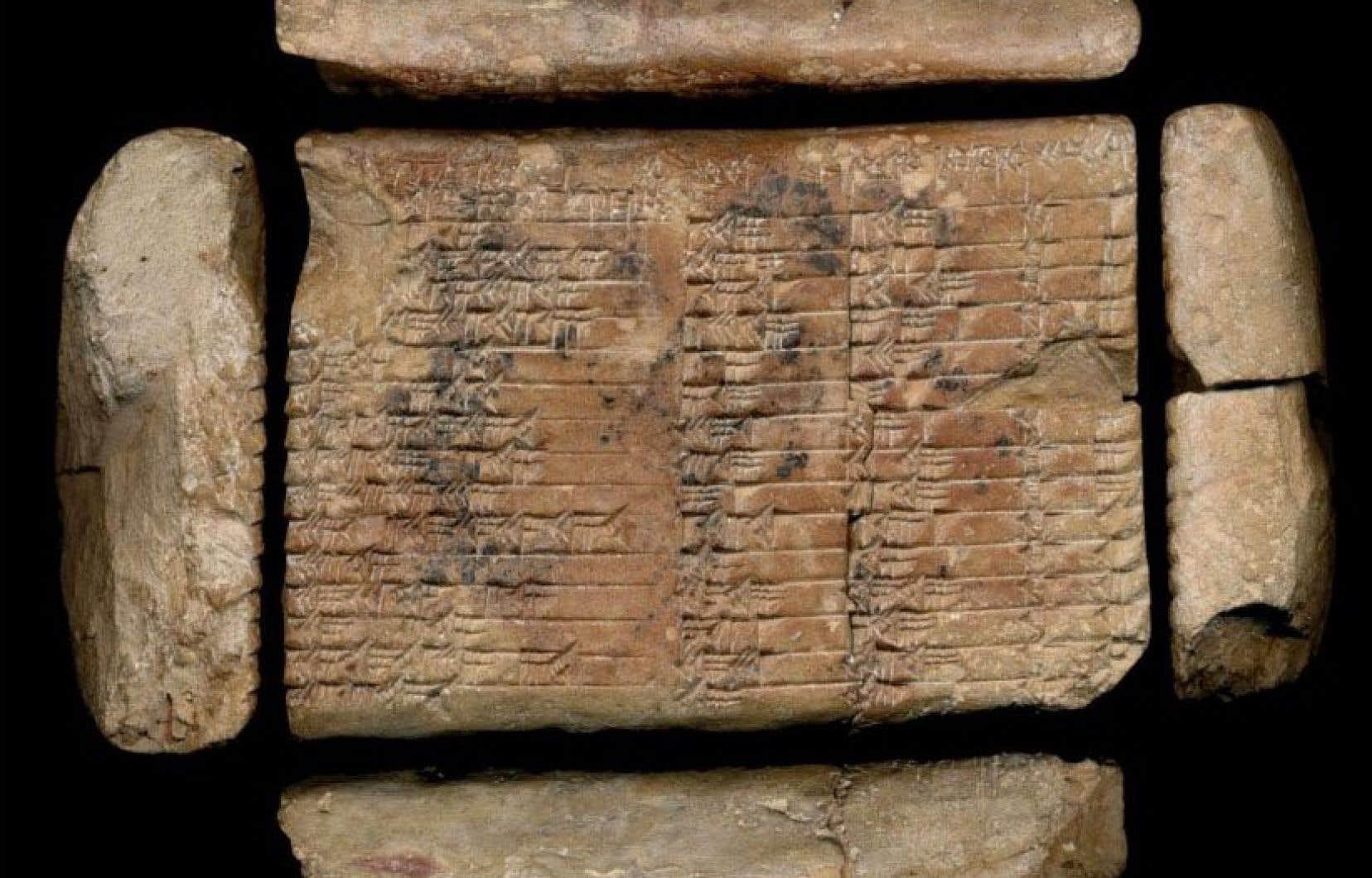 La tablette «Plimpton 322» est conservée à la Rare Book and Manuscript Library de l'Université Columbia à New York.