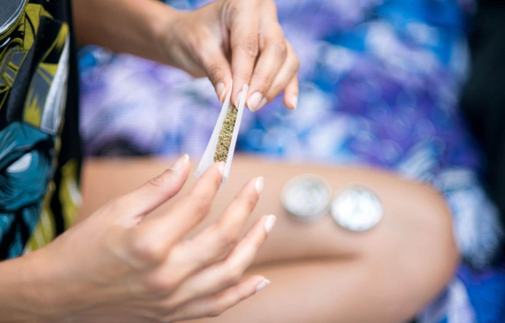 Si hausse du tourisme il y a avec la légalisation du cannabis, elle ne sera que temporaire.