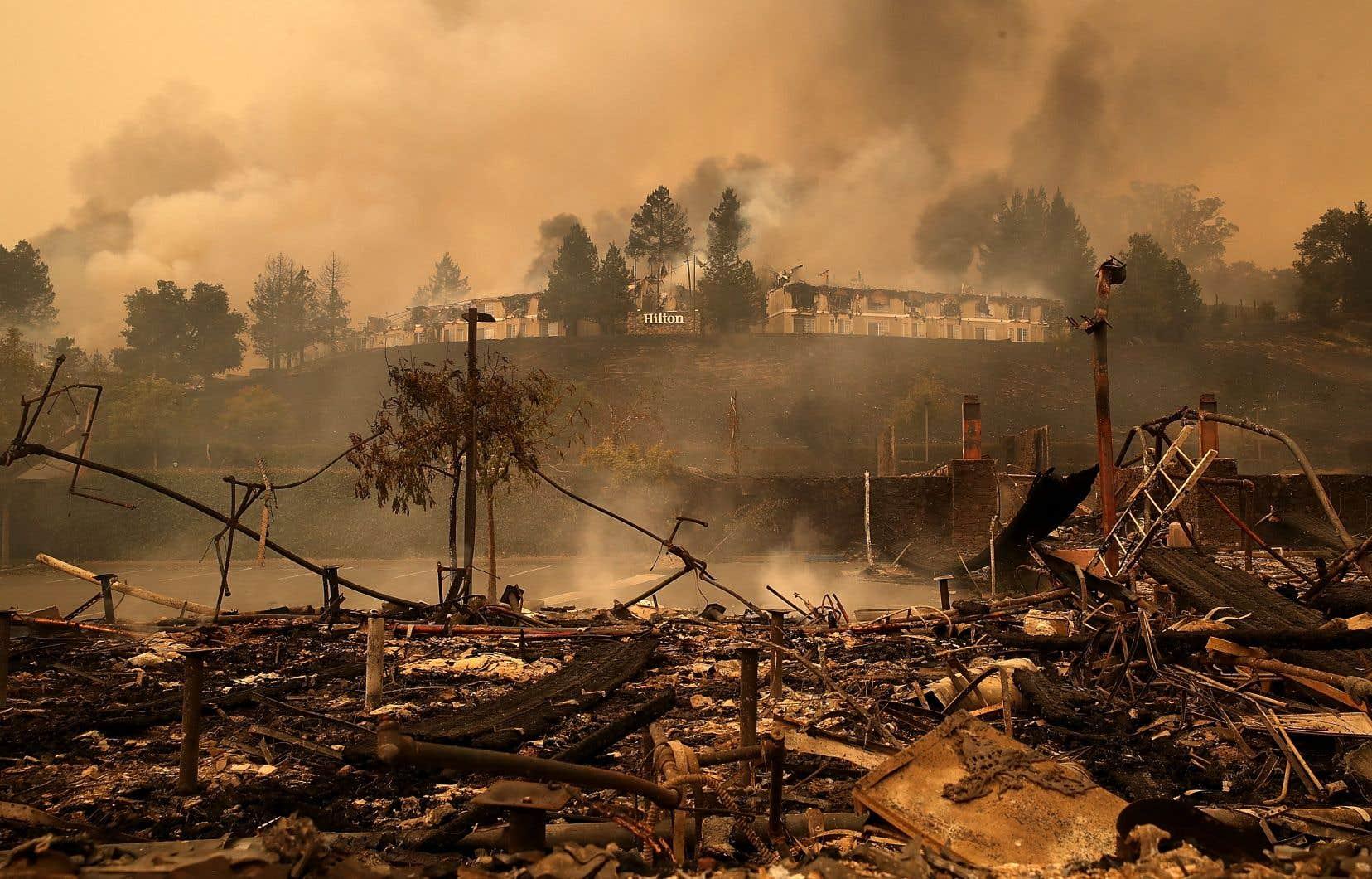 Selon les autorités, l'incendie aurait réduit en cendres 41 kilomètres carrés de superficie.