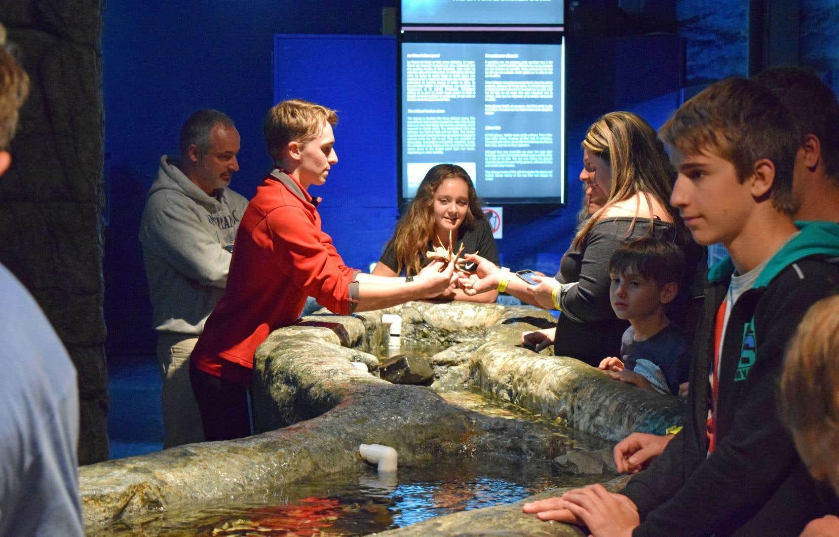 Exploramer propose aux visiteurs de découvrir des aspects méconnus de la faune marine du Saint-Laurent.