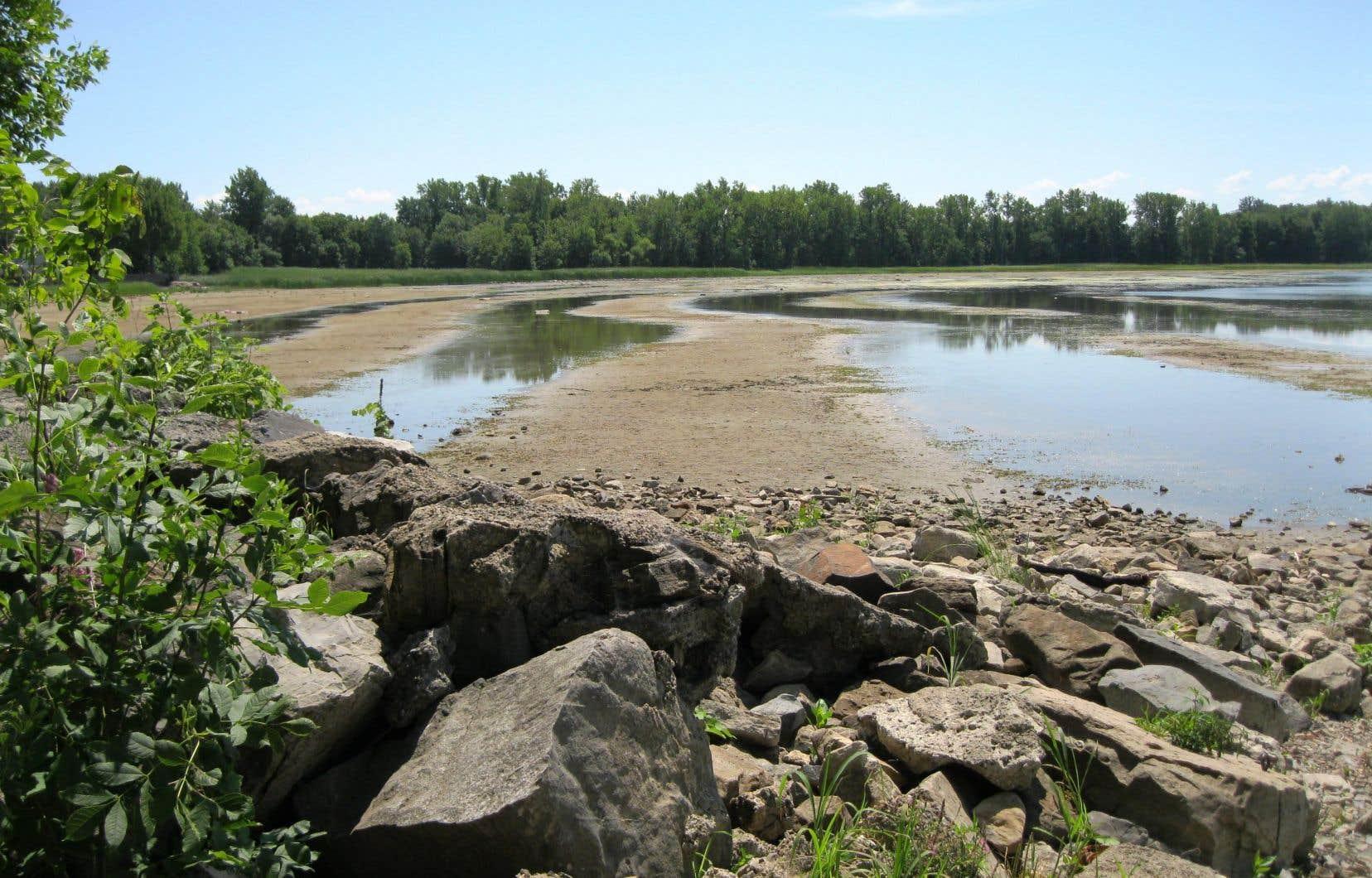 Le projet du parc national urbain sur le site de Pierrefonds-Ouest est adjacent au parc de l'Anse-à-L'Orme (sur la photo).