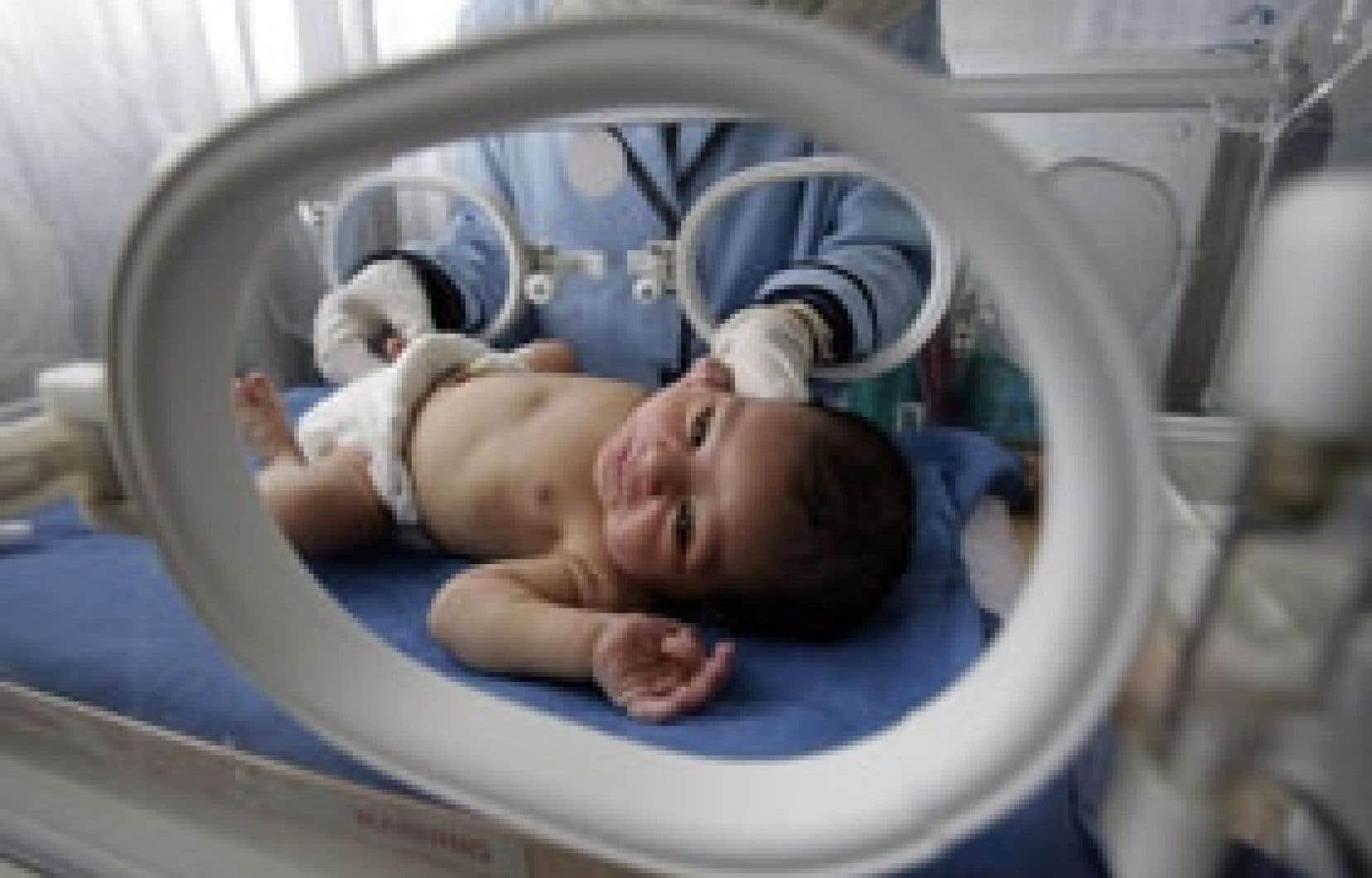 L'incubateur procurerait un environnement contrôlé, où température, lumière et oxygène maximisent le développement du cerveau.