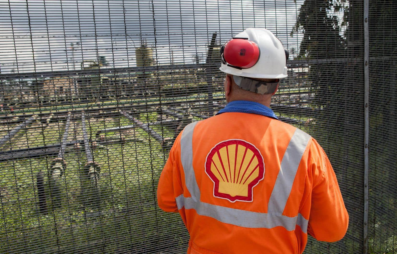 Le Nigeria possède l'une des plus grandes réserves de pétrole sur le continent et l'entreprise Shell y est le plus grand opérateur depuis le début de son exploitation, il y a 50 ans.