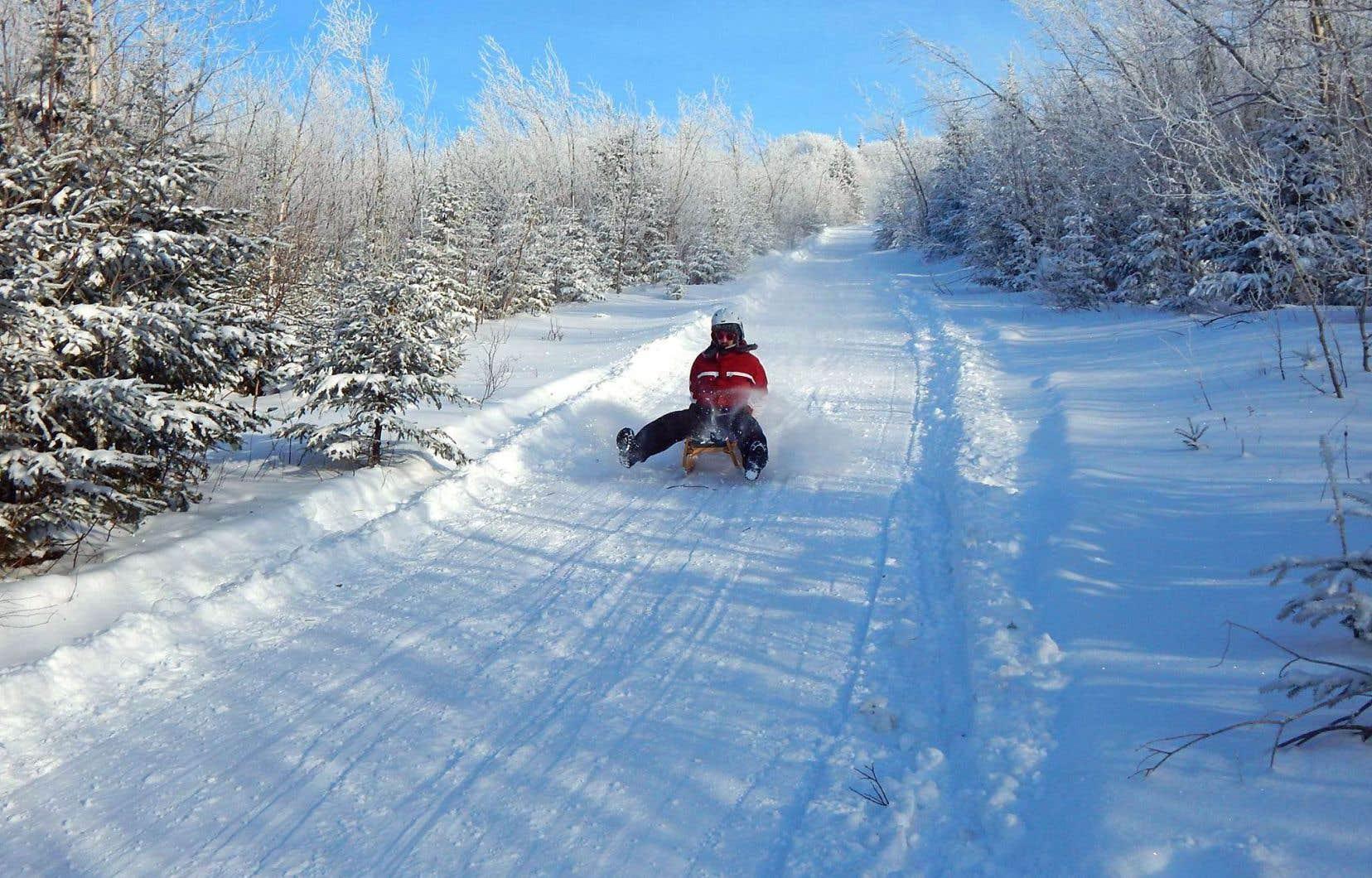 On peut pratiquer la raquette et le ski de montagne sur les pentes du «mont Radar». Mais c'est la luge autrichienne qui vole véritablement la vedette.