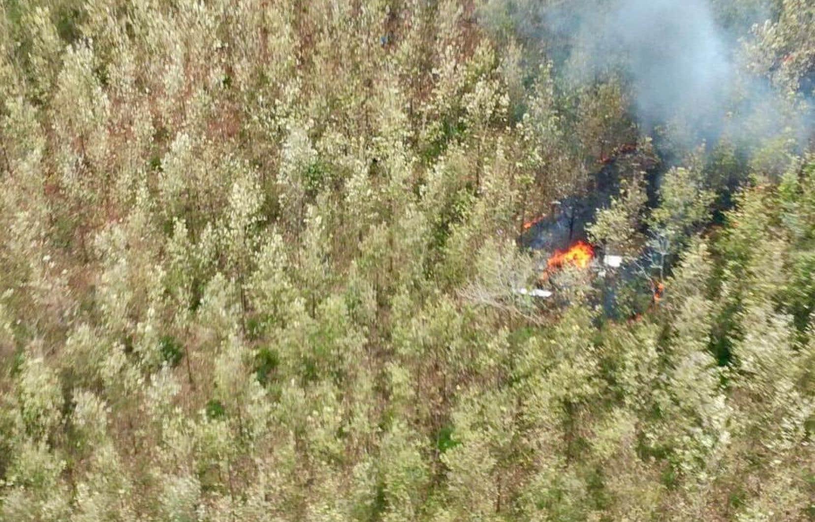 Un porte-parole du ministère de la Sécurité publiquea publié des images du site du crash, avec des morceaux de l'épave en feu.