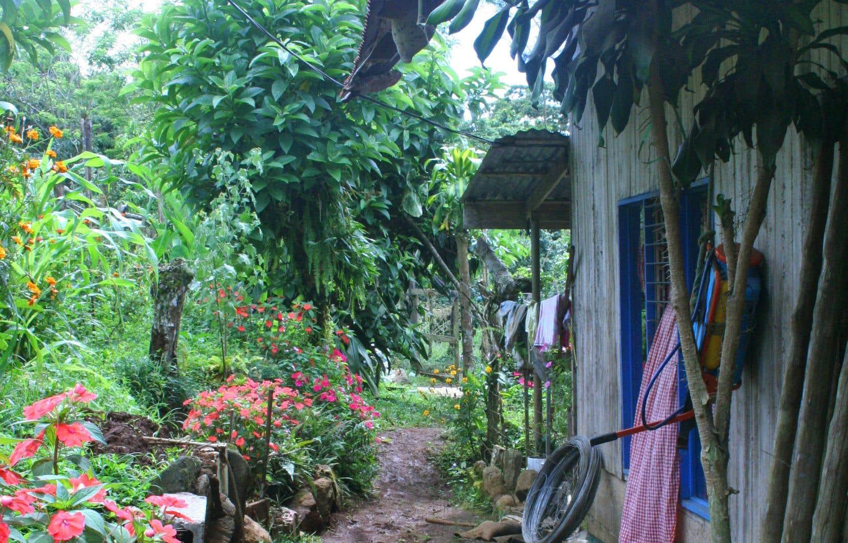 Entre les feuillages verts se dissimulent des maisonnettes colorées et des fleurs resplendissantes à Altamira.
