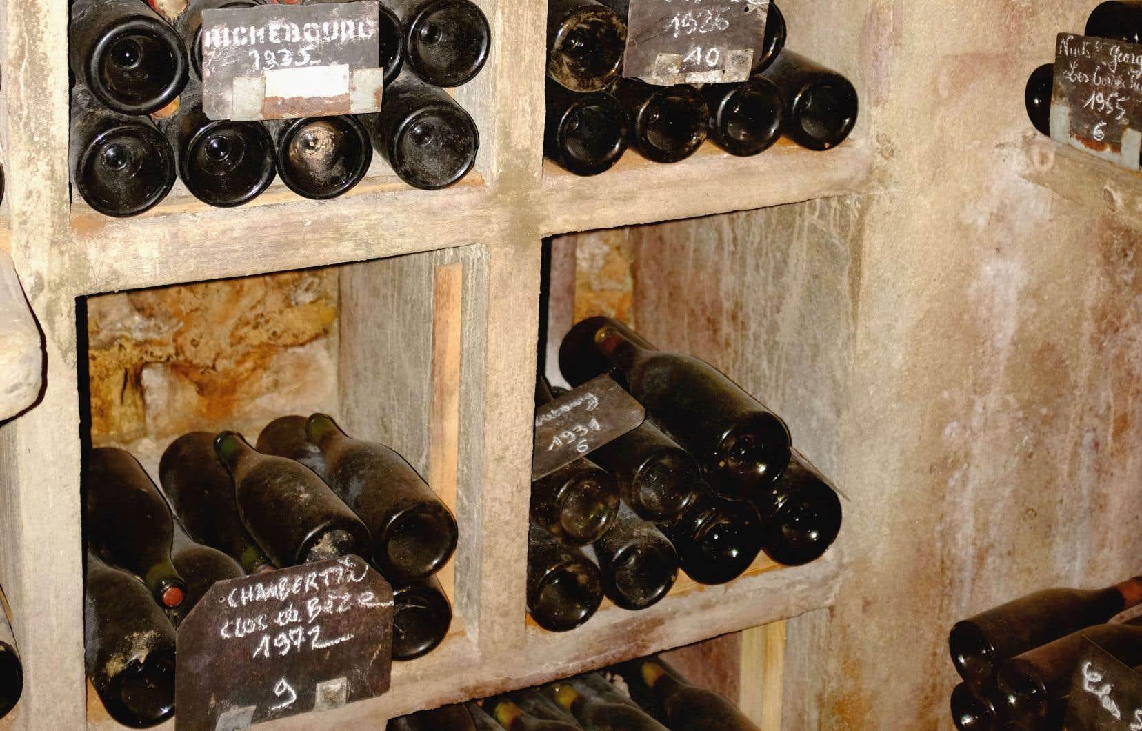 cave vin ou cimeti re bouteilles le devoir. Black Bedroom Furniture Sets. Home Design Ideas