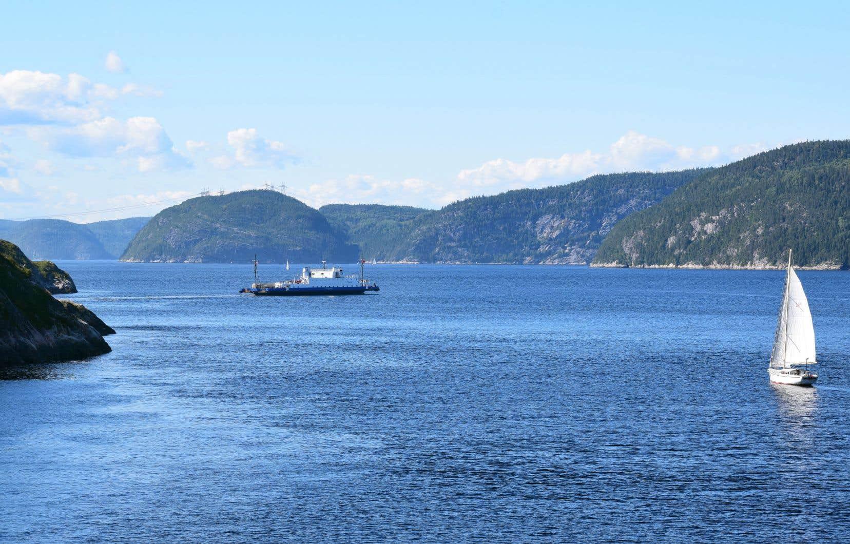 Du pétrole déversé en profondeur dans le cadre de forages dans le golfe du Saint-Laurent risquerait de remonter jusqu'à Tadoussac, au cœur du parc marin du Saguenay–Saint-Laurent.