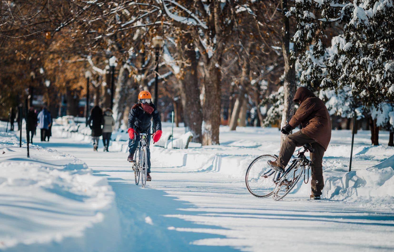 Le nombre de cyclistes hivernaux sur les pistes les plus populaires de Montréal a bondi de 159% entre les années 2015 et 2017.