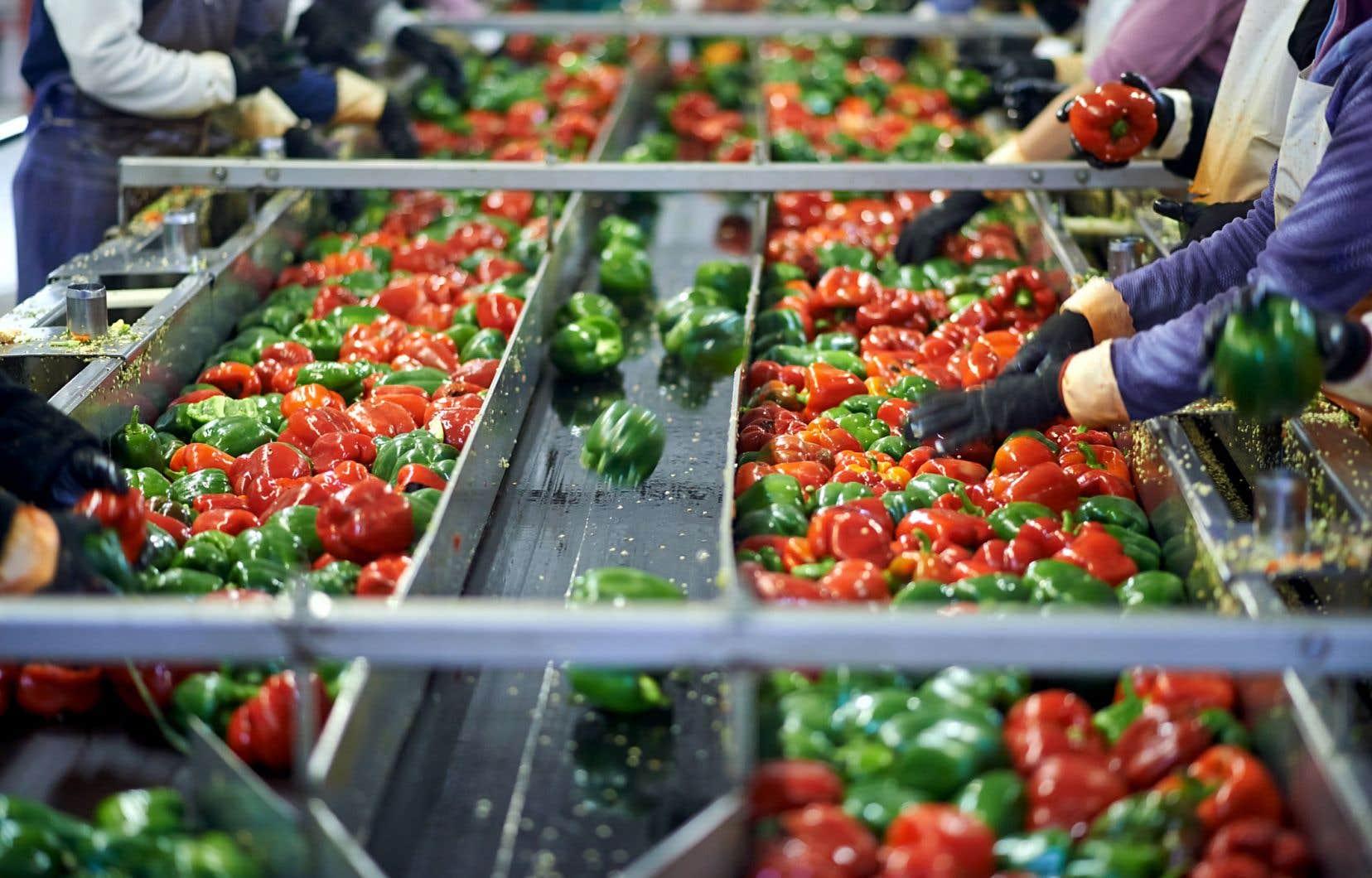 Une politique agroalimentaire doit intégrer et maintenir en équilibre tout un éventail d'éléments interreliés.