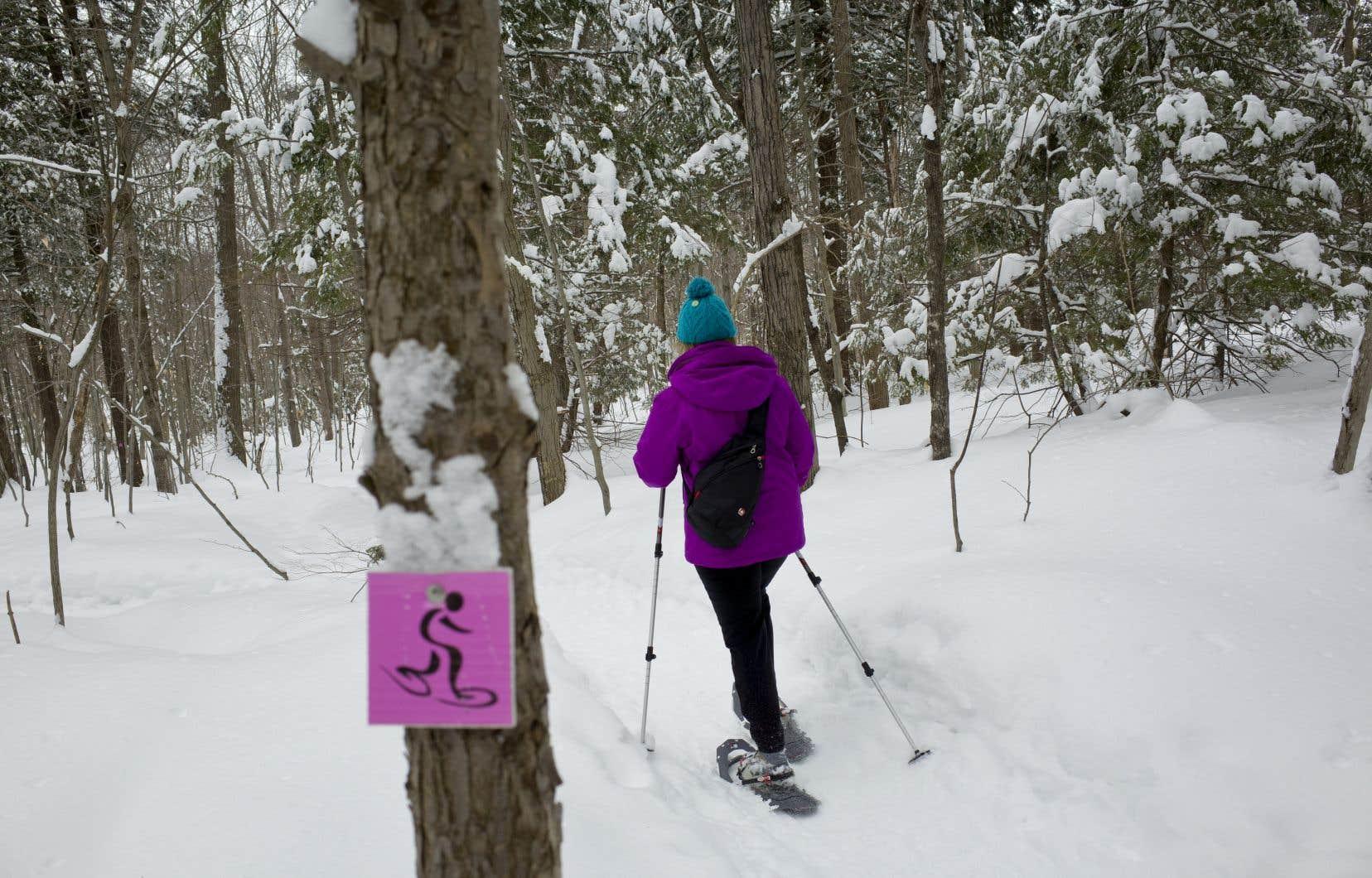 Pourquoi la raquette n'est-elle pas un sport olympique au même titre que le ski?