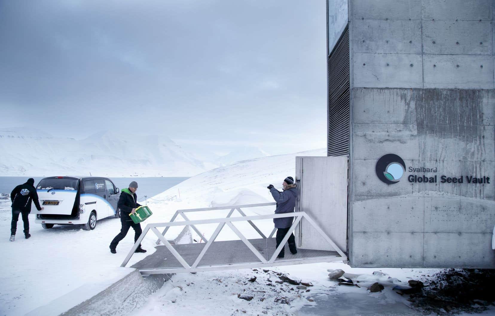 La Réserve mondiale de semences du Svalbard a franchi le million d'échantillons de graines déposés.