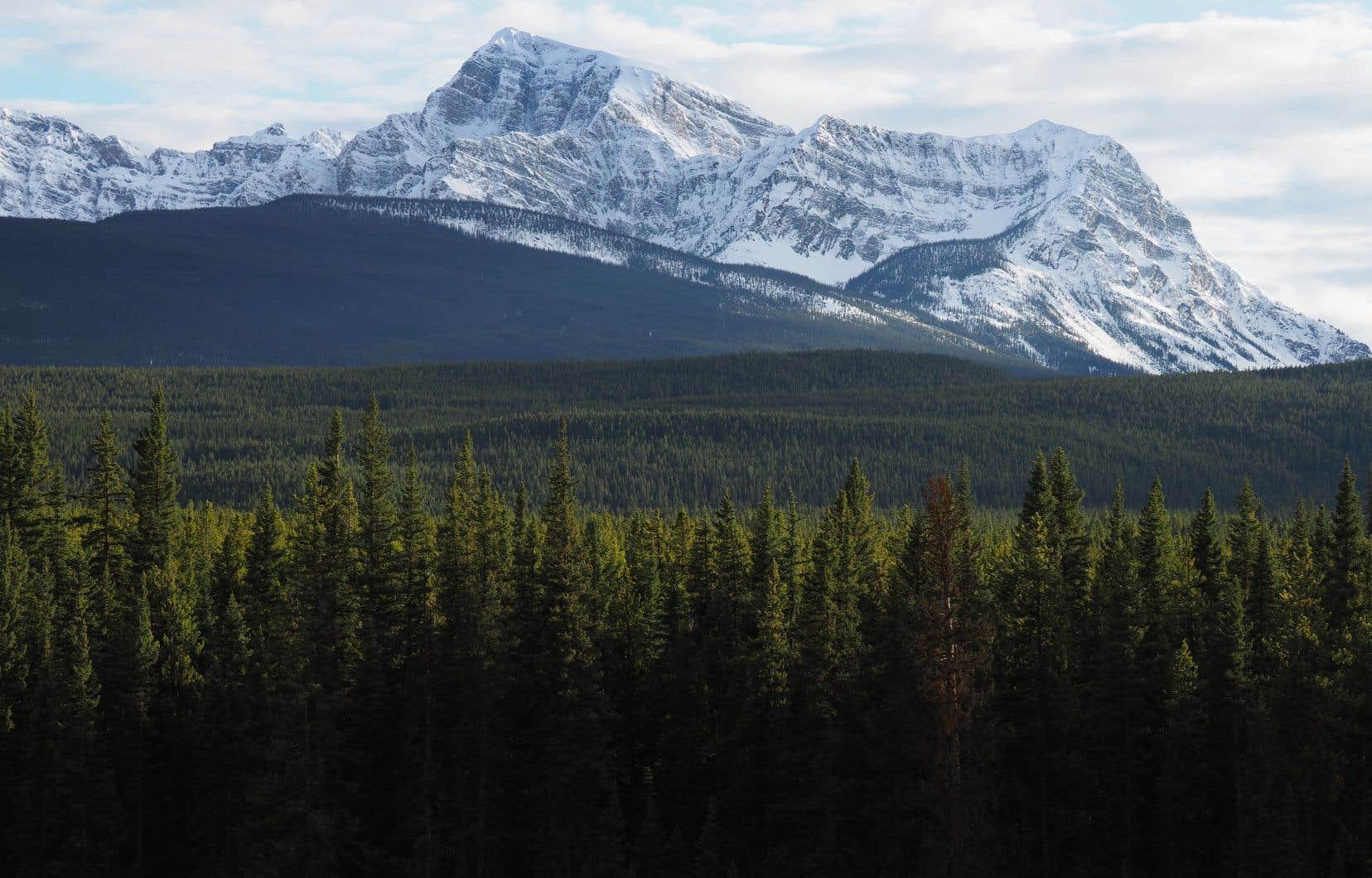 Le parc national de Banff, en Alberta. Le gouvernement fédéral s'engage à protéger au moins 17% du territoire canadien d'ici 2020, alors que ce taux atteint présentement 10,6%.