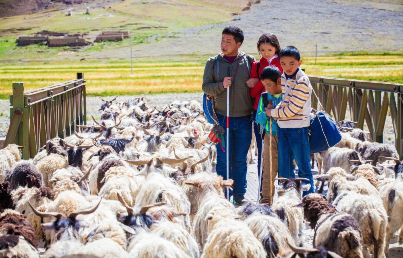 De la lumière, il y en a à profusion dans «Ballade du Tibet», du réalisateur chinois Zhang Wei.