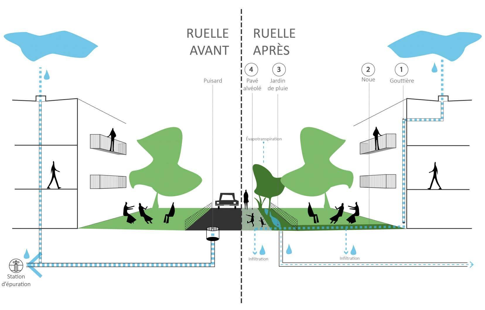 Projection du système de récupération des eaux dans les futures ruelles bleues-vertes.