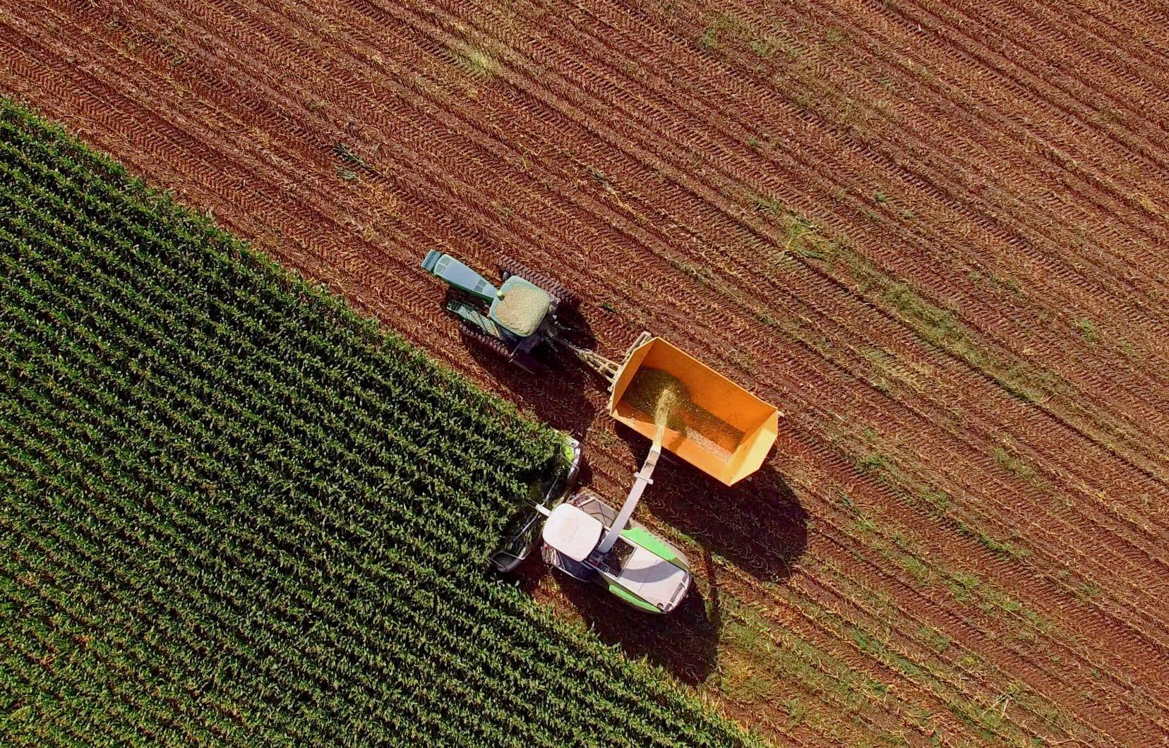 L'utilisation de pesticides agricoles atteint des niveaux records au Québec. Rappelons que ces produits sont conçus pour être toxiques et ils sont épandus dans l'environnement de façon volontaire, soulignent les auteurs.