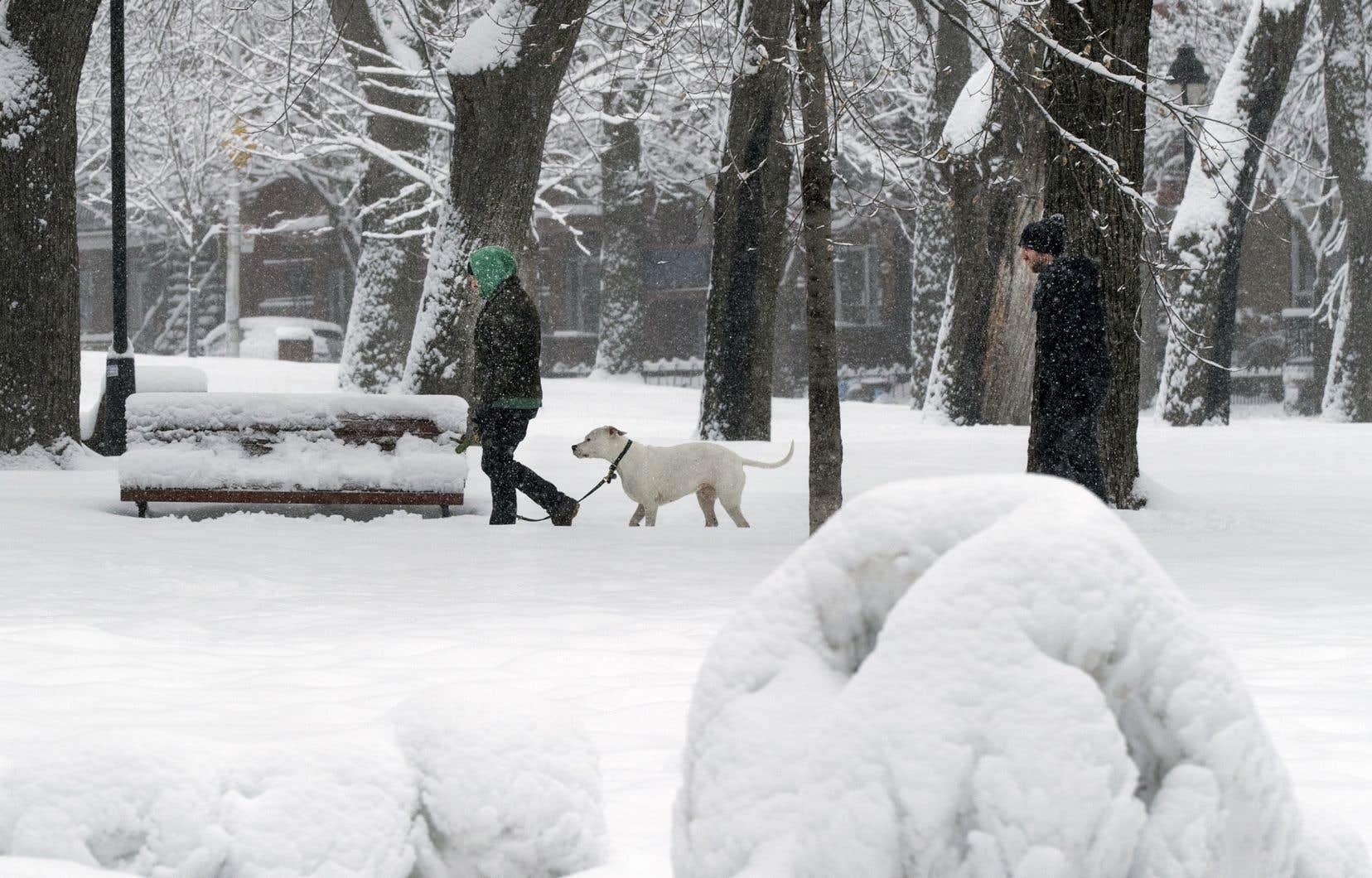 Les Montréalais ont reçu une vingtaine de centimètres de neige depuis mardi.<br />