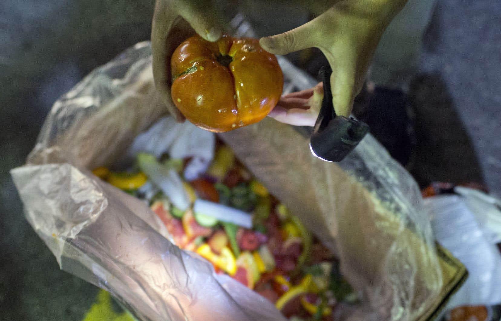L'un des projets du Système alimentaire montréalais a pour objectif de réduire le gaspillage alimentaire.