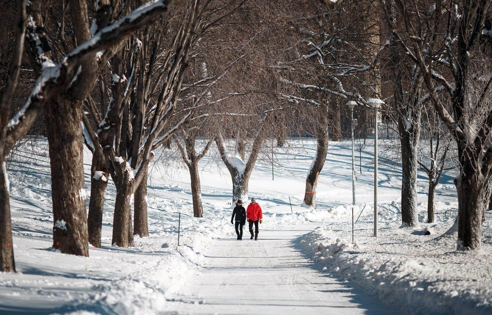 Le parc La Fontaine, d'abord connu sous le nom de parc Logan, sera réaménagé pour en faire un lieu de détente pour les promeneurs.