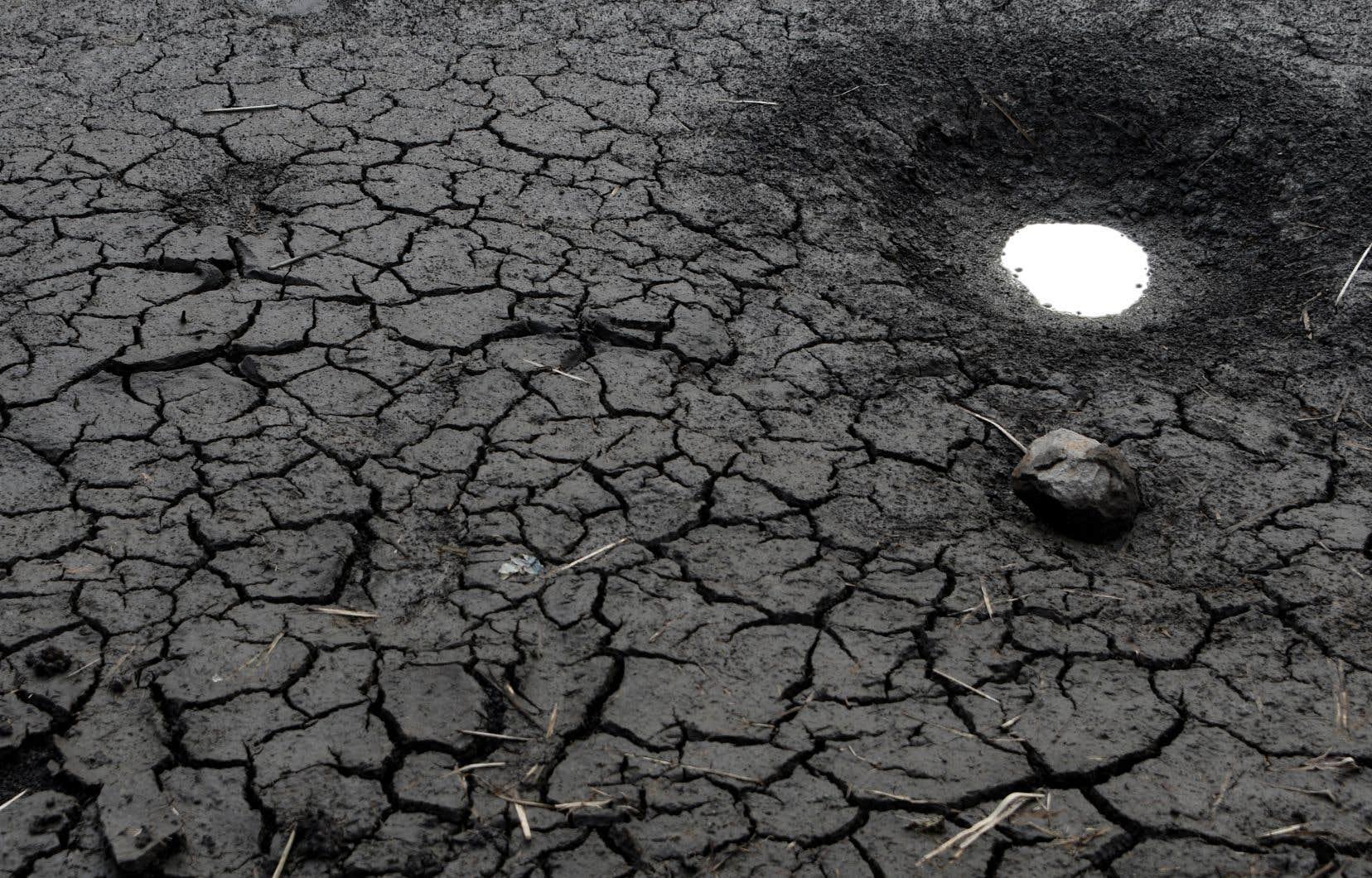 Face aux changements climatiques et à la pression démographique qui pèsent sur les ressources en eau, l'ONU recommande que les pays se concentrent sur les «solutions vertes».
