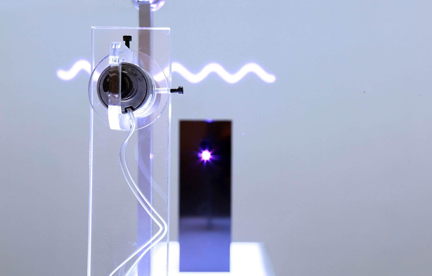 «Frequencies (A / Oscillation)», Nicolas Bernier, 2016