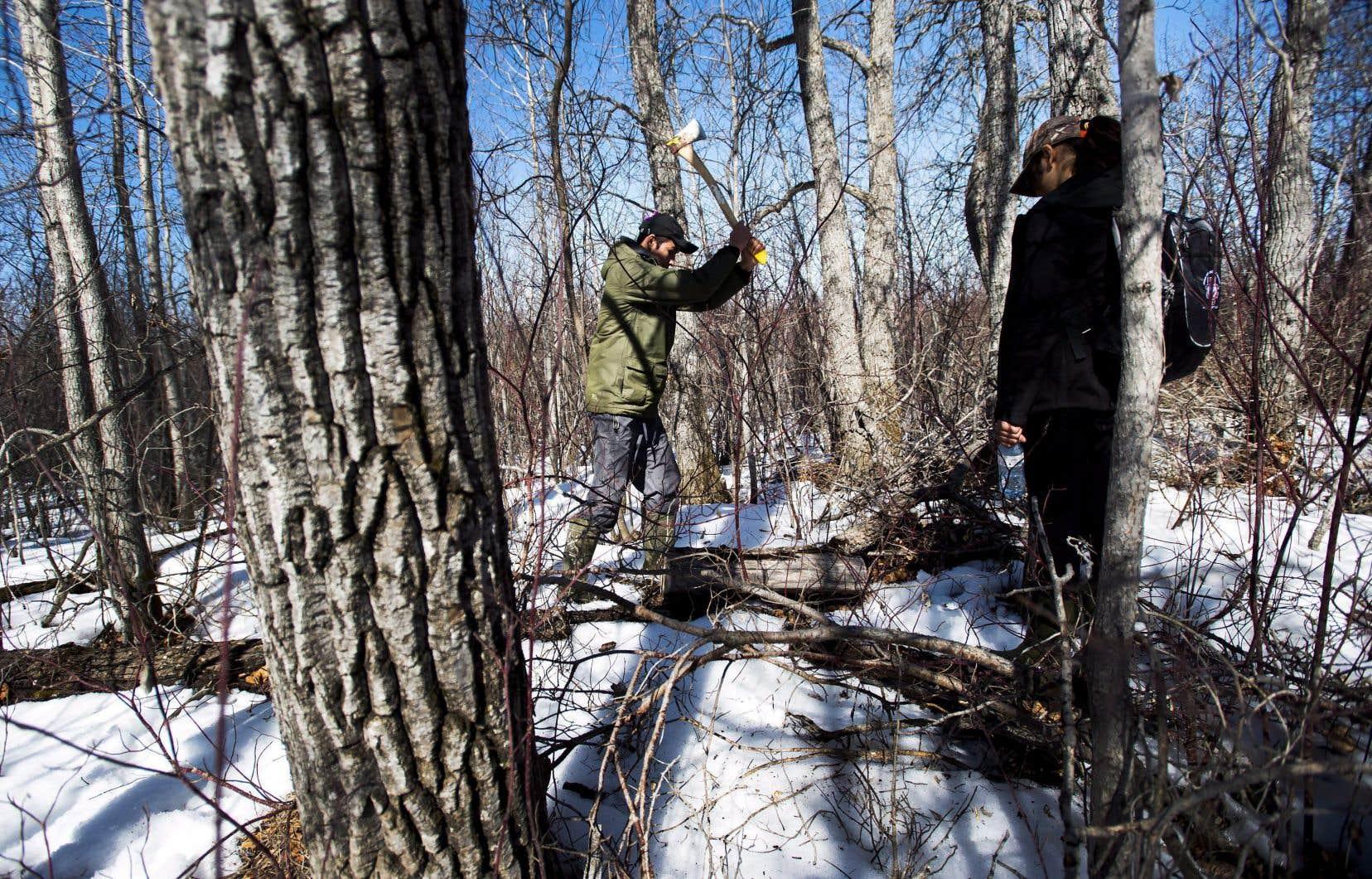 Le projet de loi fédéral C-39 prévoit permettre aux autochtones de réaliser des évaluations environnementales sur leur territoire.