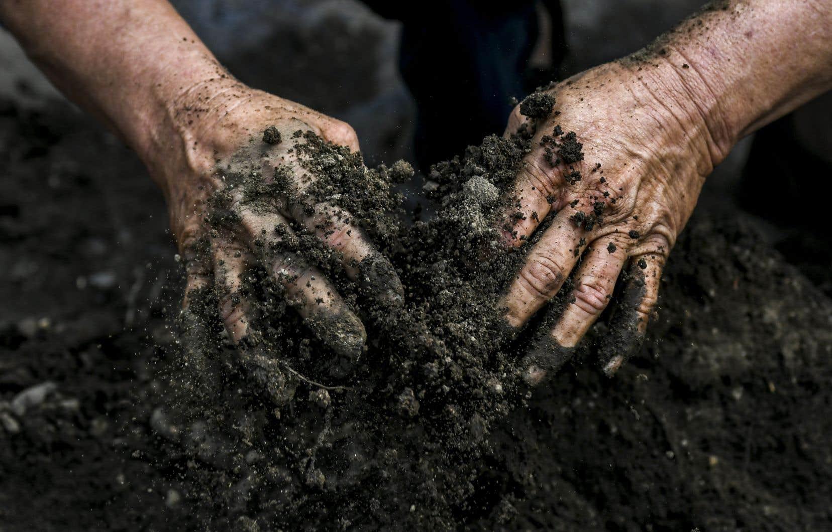 Une gestion déraisonnable des terres provoque une dégradation des sols en causant pollution, érosion, épuisement des sols, qui perdent en nutriments et en productivité.