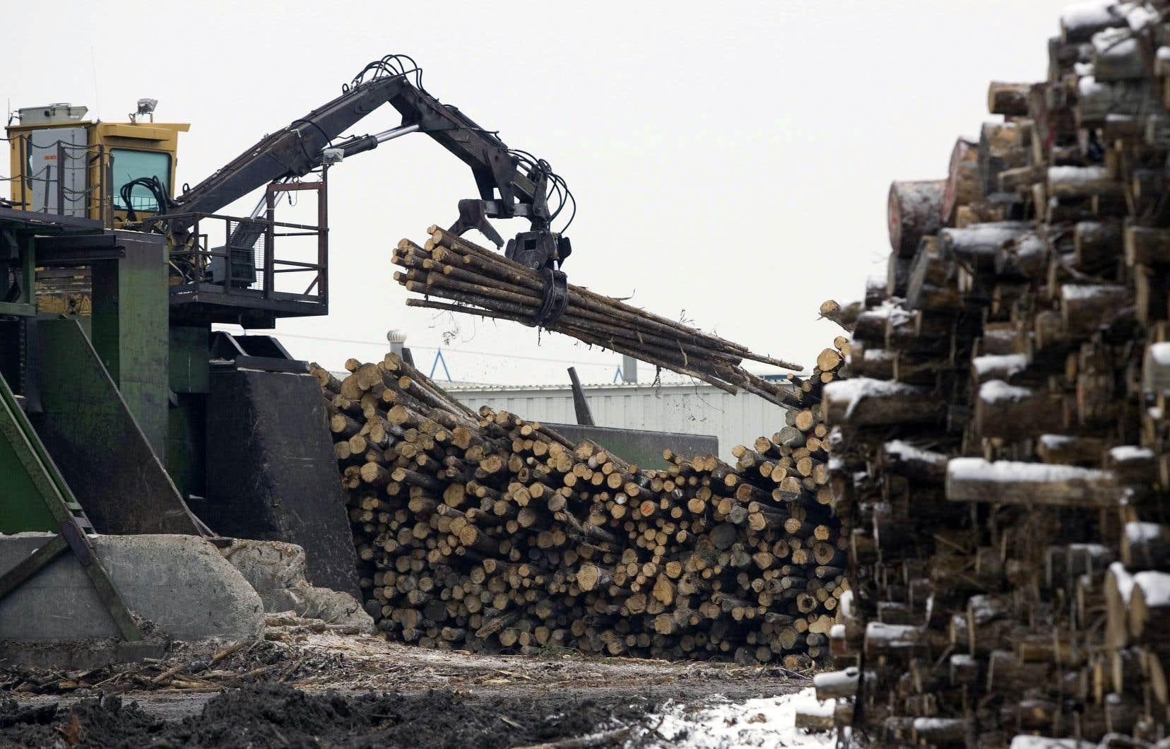 Parmi les industries à risque, on trouve celles directement visées par la rhétorique protectionniste américaine, comme le bois d'œuvre.