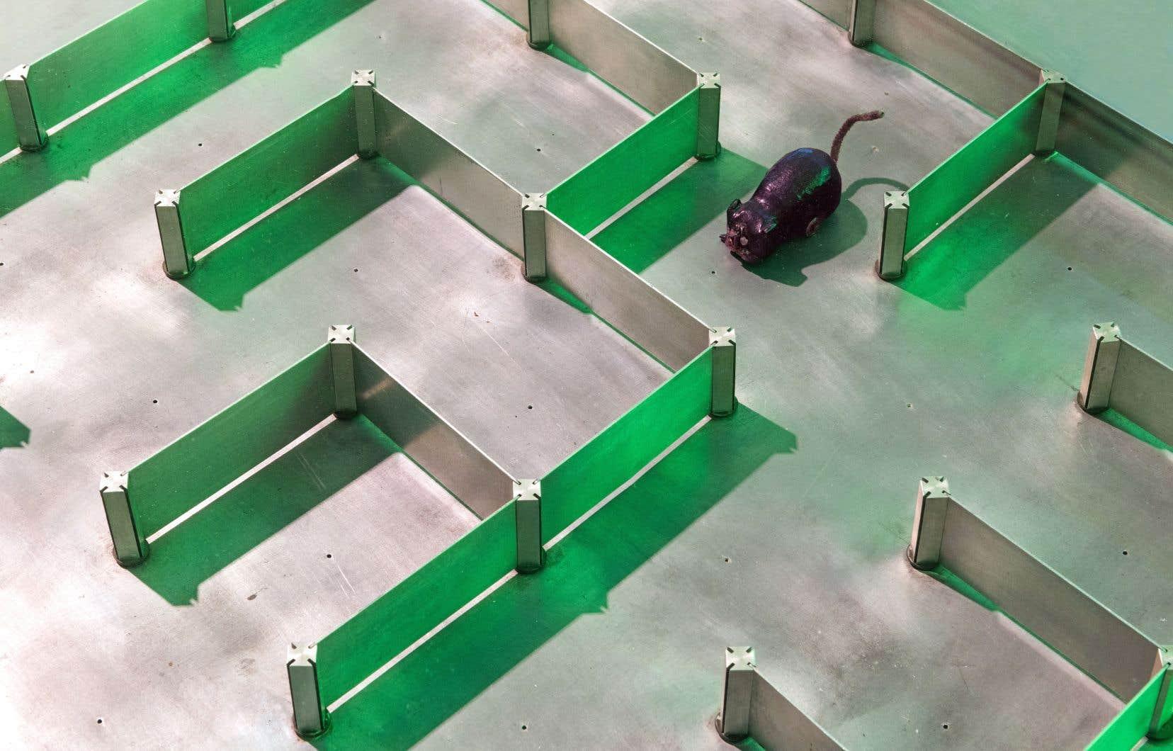 Claude Shannon, «Labyrinthe Theseus», 1950-1952